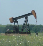 A Pump Jack operating in a field